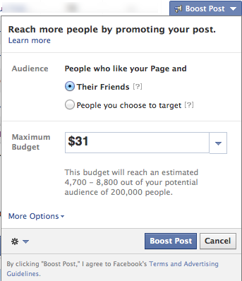 """Example of """"Promoted Post"""" on Facebook"""