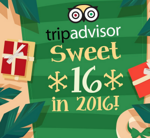 Tripadvisor Sweet 16 in 2016 #infographic