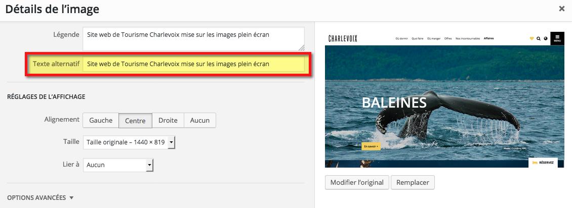 """Il est important de remplir le champ """"alt-image"""" ou """"description"""" des images sur votre site"""