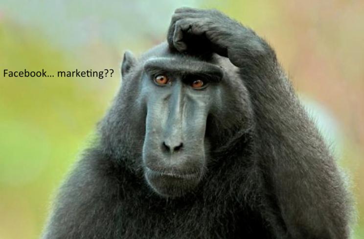 Facebook Marketing ?