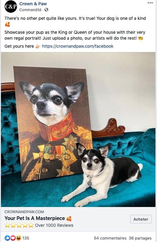 Exemple de publicité pour Crown & Paw sur Facebook